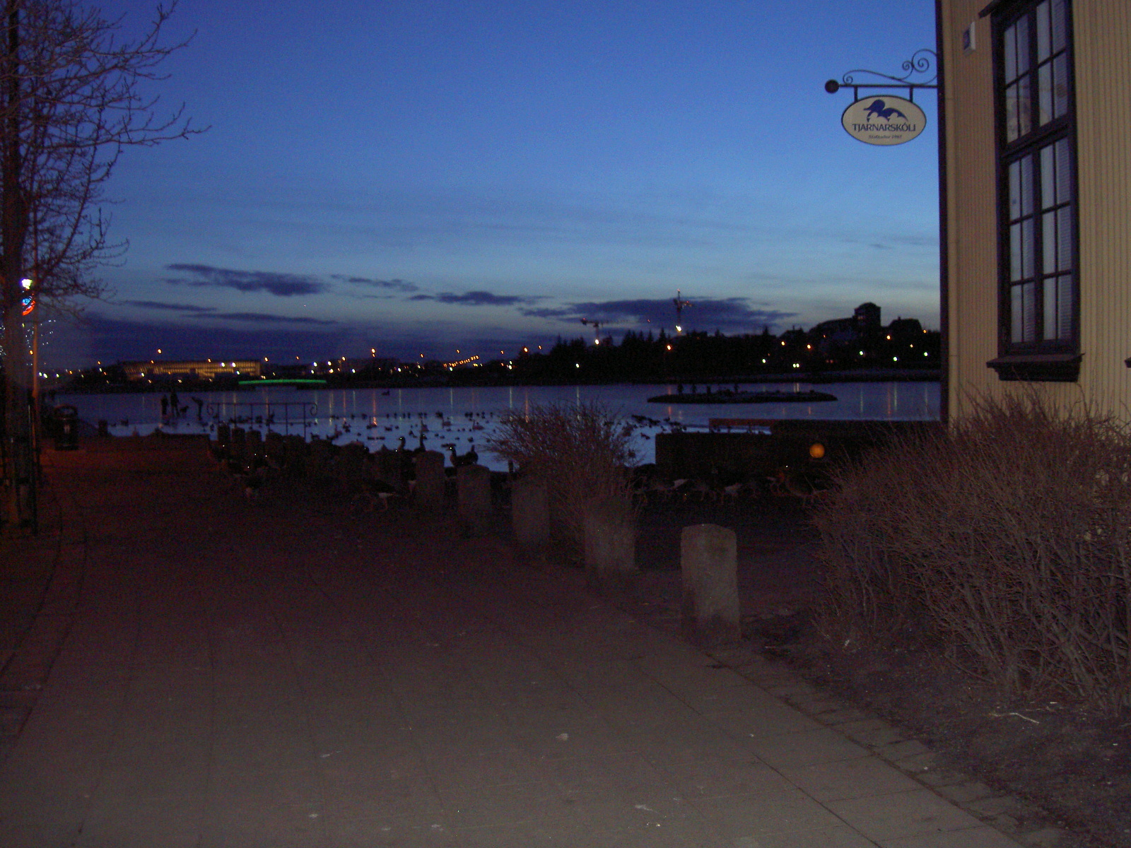Evening view of Tjornin City Pond, Reykjavik (purpose of page is to display an image)