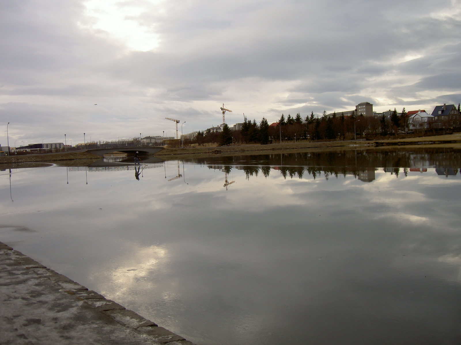 Tjornin City Pond in Reykjavik, with ice (purpose of page is to display an image)