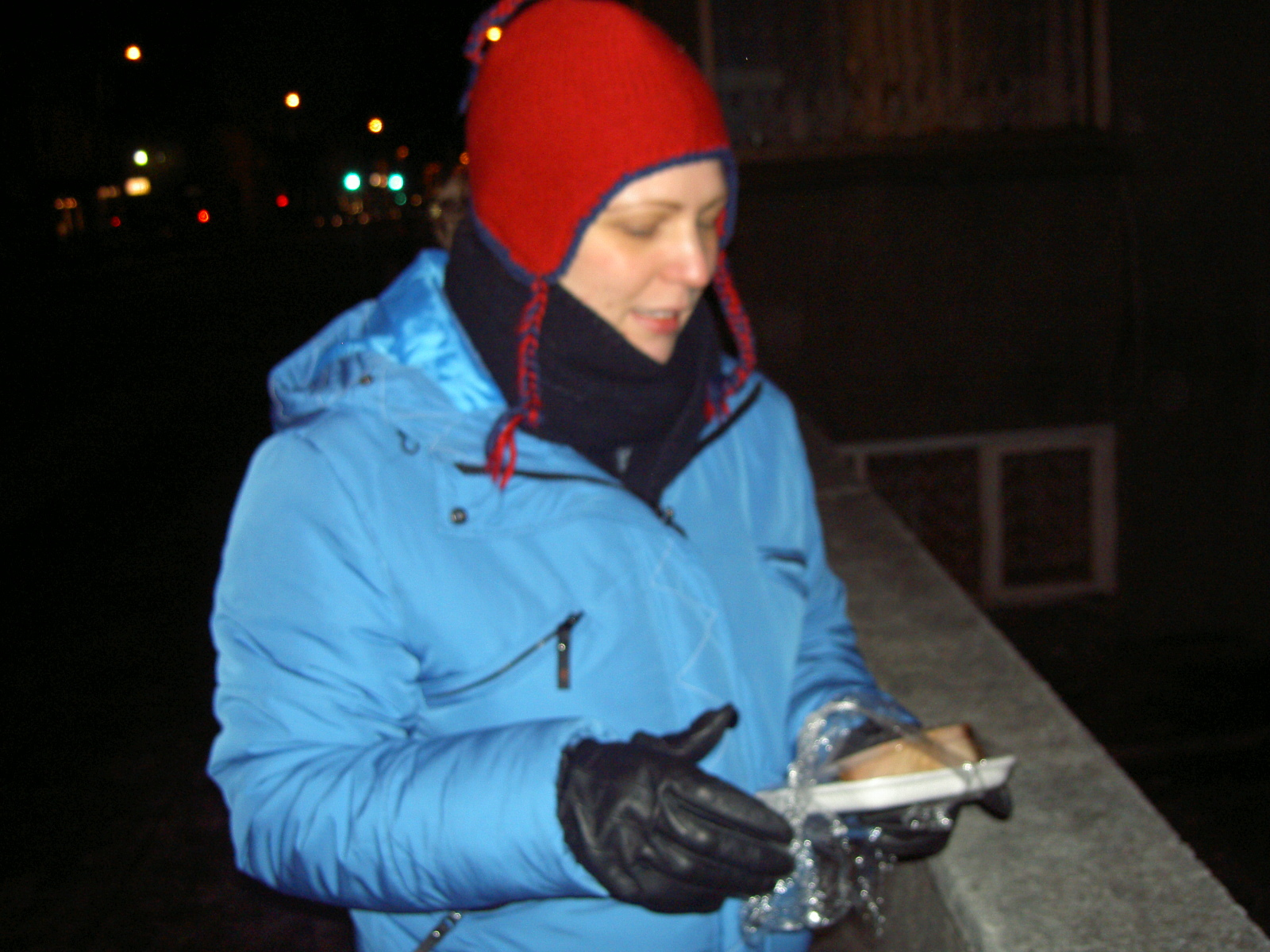 Ann preparing to taste hakarl (purpose of page is to display an image)